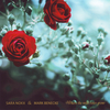 Where the wild roses grow - CD
